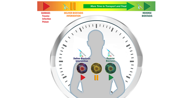 "Image Caption: DARPA's Biostasis program aims to prevent death following traumatic injury by slowing biochemical reactions inside cells, thus extending the ""golden hour"" for medical intervention. The desired interventions would be effective for only limited durations before the process reverts and biological processes resume at normal speeds."