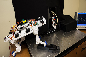The image depicts one of the USC researchers robots and the new robotic limb in action. Photo Credit: USC/Matthew Lin