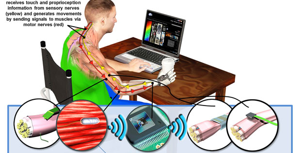Hand Proprioception and Touch Interfaces (HAPTIX) program