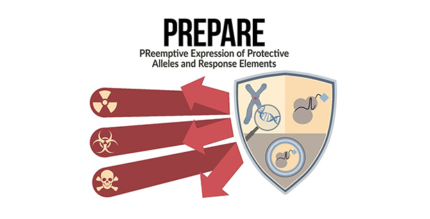 PReemptive Expression of Protective Alleles and Response Elements (PREPARE)