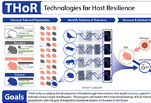 DARPA's new Technologies for Host Resilience (THoR) program aims to tackle the rising prevalence of multi-drug-resistant pathogens, as well as emerging biological threats.